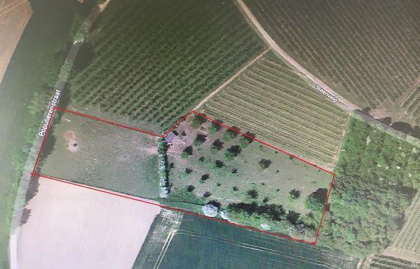 Weide te koop in Sint-Truiden